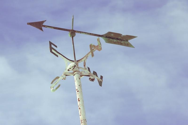 wind-rose-1209398